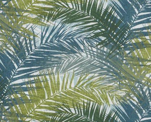 Jungle Aruba