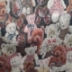 Bears Tapestry Fabric